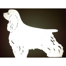 Reflective Cocker Spaniel