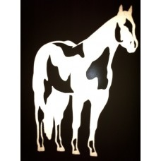 Reflective Paint Horse
